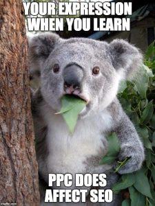 PPC does affect seo meme