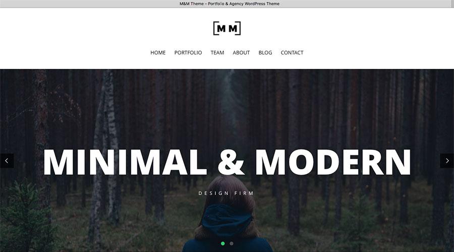 cool minimalist wordpress theme